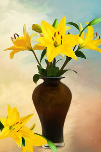 Yellow Daylily Still Life