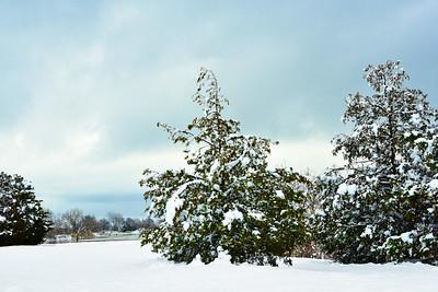 April Snow Tranquility-NJ Meadowlands