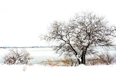 April Snow - NJ Meadowlands #1