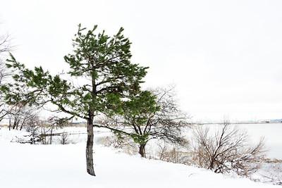 April Snow-NJ Meadowlands #6