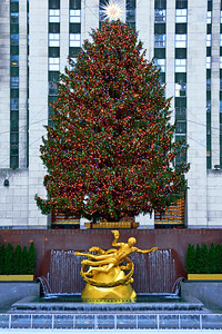 Prometheus and the Christmas Tree