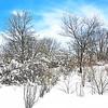 NJ Meadowlands Spring Snow 2