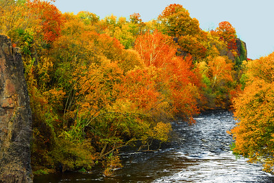Fall F oliage Passaic RiverN.J.
