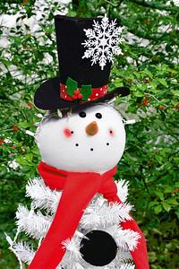 Frosty the Un-Snowman