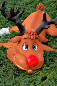 Rudolph's Reaction to 2020
