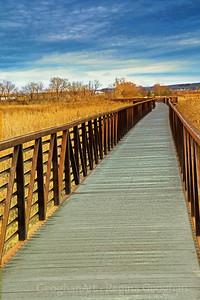 NJ Meadowlands Green Space Boardwalk