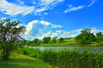 Summer Greenery and Blue Skies Landscape