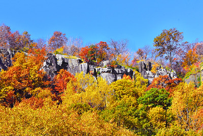 Clifftop Autumn Foliage-NJ Palisades