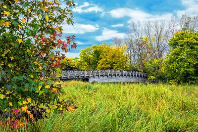 Marsh Bridge and Emerging Autumn Colors