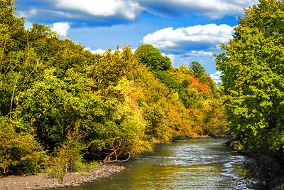 Autumn along the Passaic River N.J.