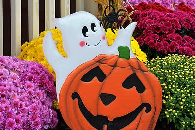 Halloween Garden Display