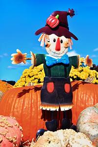 Autumn Season Fun