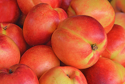 Farm Market Nectarines