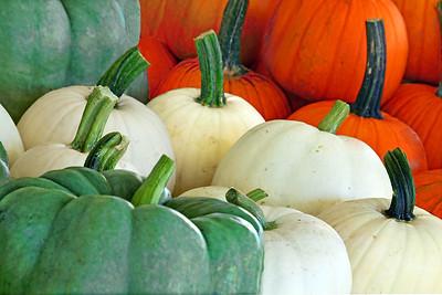 Farm Pumpkin Display