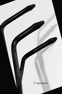 Day 047: Alphabet Day 'E'. - February 16.  An E for alphabet challenge day.  This is a photo of my small gardening hand rake propped against a piece of white board with an overhead light fo create a shadow.