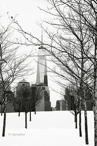 Day 048: One World Trade - February 17    One World Trade Center and lower Manhattan viewed through the trees and snow covered ground at Liberty State Park in NJ.  One of two posts from a visit to the park yesterday.