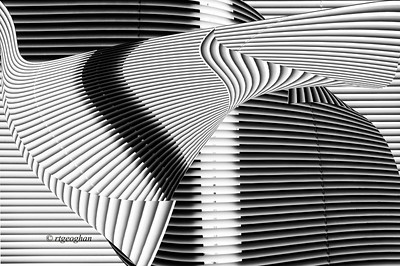 Day 008: Black and White Abstract - January 8, 2014.  A little abstract play yesterday since I was housebound waiting for a service person to arrive.  When opening my balcony door on Sunday evening, it came off the track and was stuck in a partially open position. Spent Sunday night, Monday and most of yesterday with very frigid air blowing into the apartment.  It is fixed temporarily but I need to have the door removed and reseated in the frame to - hopefully - fix the problem.