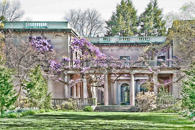 Day 105: VanVleck House and Gardens- April 14, 2012.  A stylized version (Topaz Adjust) of this lovely old house and garden in Montclair NJ with the Chinese Wisteria beginning to bloom.