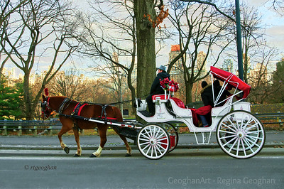 Day 346: Horse and Carriage Central Park - Dec 12.
