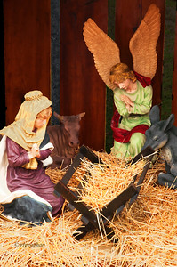 Day 353: Nativity Scene - Dec 19.  Part of a Nativity Scene displayed outside of a local church.