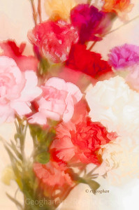 Day 313: Flower Impressionism - Nov 7.  Snow, rain, cold - dark and dreary.  Needed some creative boost.  Picked up a small bouquet at the supermarket and started playing with creating impressionistic effect in the camera,   Worth experimenting more with technique, I think.