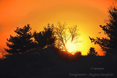 Day 337: November Sundown - Nov 30.  Sundown image last evening taken from a parking lot in Secaucus NJ.