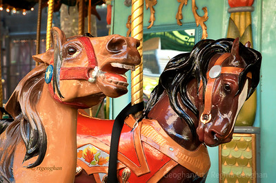 Day 270: Le Carrousel - Sept 26.  Two of the beautifully made horses included in the collection of fourteen animals of the carousel at Bryant Park NYC. These wonderful animals are replicas of classical carousel sculpted creatures.