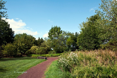 Day 260: DeKorte Park Lyndhurst NJ - Sept 16. Perfect weather this weekend to get outside for a walk.