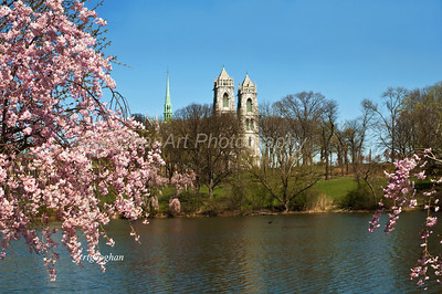 Day 107: Cherry Blossoms-Sacred Heart Basilica Cathedral - April 18.   A view of cherry blossoms, Branch Brook Park Lake with the Cathedral Basikica of the Sacred Heart, Newark NJ, in the background.  This is the 5th largest cathedral in North America and the seat of the Roman Catholic Archdiocese of Newark.