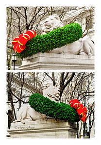 Day 347: NY Public LIbrary Lions - December 14,  Patience (top) and Fortitude - the beloved lion sculptures tthat grace the front of the main branch of the NY Public Library are decorated with Cristmas wreaths this year for the first time since 2004.   The marble sculptures have been in place since 1911 when the Beaux-Arts library building was dedicated.  In 2004 the lions were cleaned and restored after decades of pollution and weather thad caused damage to the marble. The convervators also determined that the practice of decorating the lions with holly wreathes at Christmas and other decorations for  holidays and events contributed to the damage so a decision was made to stop the decorations.  This year, the Christmas wreath decoration is back and the lions are adorned with wreaths composed of materials that are not corrosive to the marble. and the wreathes do not contain lights.