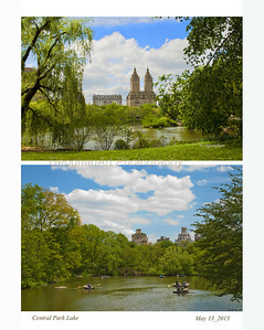 Day 132: NYC Central Park Lake - May 14.   Thanks for the many nice comments posted for my yellow rose image yesterday.  Todays post is a duo of shots of Central Park Lake.  The top one is the view facing east and the bottom is the view of the lake facing west.
