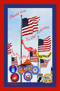 Day 315: Veteran's Day Collage - November 11.  Happy Veteran's Day to all those who have served and are currently in our military.  Thank you for your service.