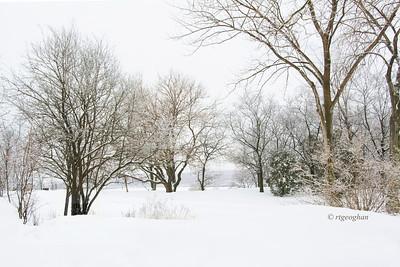 Nj Meadowlands Winterscape