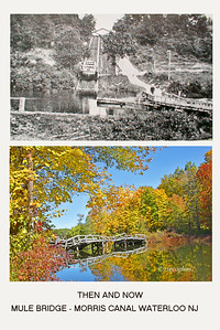 Day 287: Morris Canal Mule Bridge-Then and Now - Oct 14.  A recent photograph of an old mule bridge over the Morris Canal with fall foliage and reflections combined with a vintage photograph that I found of when the bridge and canal lock were functioning.  Mules would pull the barges filled with iron ore and coal along the canal until the reached the canal lock.  Barges entered the lock that raised the water level to bring the barge to the start of the mountain incline.  The barges was raised up the incline by pulleys and water power while the handlers and mules/horses walked across the bridge and up the incline to meet up with the barge for the next stage of canal travel.  Very interesting history.  As you can see, the bridge has deteriorated and been severely damaged by Superstorm Sandy.  But a plan is in the works to restore the bridge.