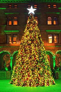 NYC Christmas Lotte Palace Tree