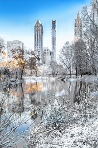 Winter Simplicity Central Park VI
