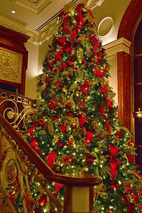 NYC Lotte Christmas Tree
