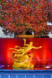 Prometheus under the Tree NYC