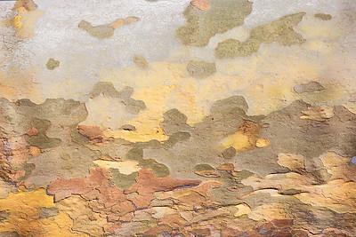 Abstract Tree Art