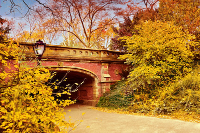 Driprock Arch Central Park Autumn View