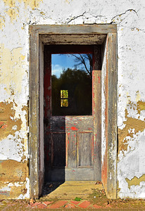 Reflections on a Weathered Door