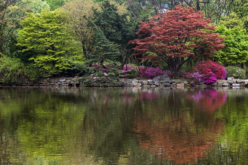 Reflections at the Chundangji pond