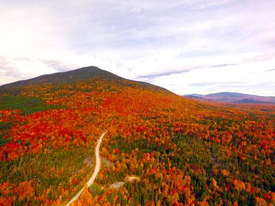 Foliage at West Kennebago Mountain