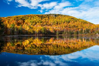 Foliage Reflections at Harvey Pond