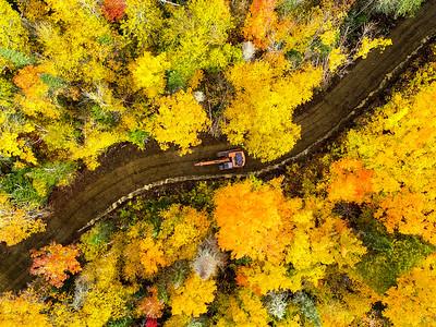Road building in Autumn