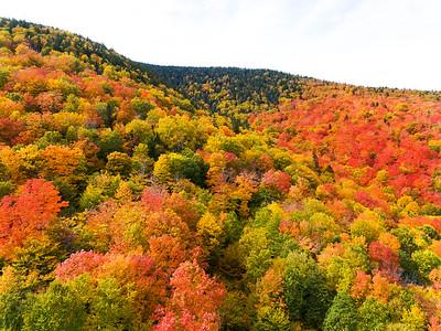 West Kennebago Foliage