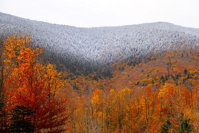 Snowliage on West Kennebago Mountain