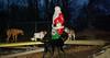 Foxi & Santa claus_002