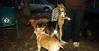 Stack (new pup 4mo)_001