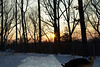 Park (sunset)_00001